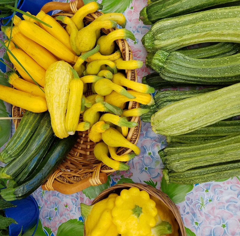 Summer_squash_mix_small